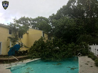 A tree fell into a pool and damaged the siding of a home on Merriam Way in Upton, Massachusetts