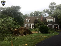 More tree and property damage in Upton