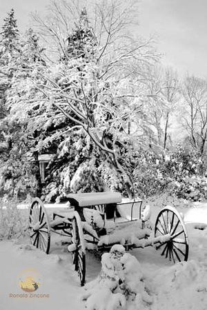 Carriage in snow, URI campus, Kingston, RI copyright ronaldzinconephotography
