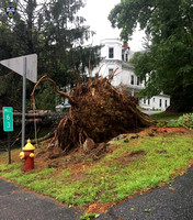 Wind gusts uprooted this tree in Upton, Massachusetts.