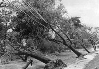 Hurricane Belle 1976