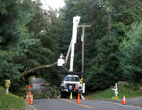 Connecticut Light & Power crew removes a tree caught in power lines on Compo Road North